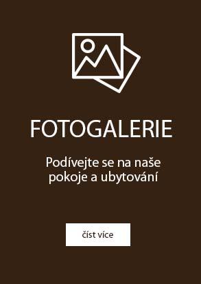 fotogalerie ubytování pod pálavou, okolí Horní Věstonice